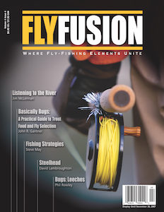 Fly Fusion Vol 4 Issue 4