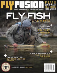 FF Cover V15I1 web